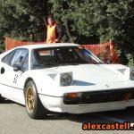Ferrari 308 GTB-Rallye